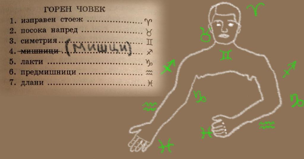 Kopfmensch-upper-man-human-rudolf-steiner