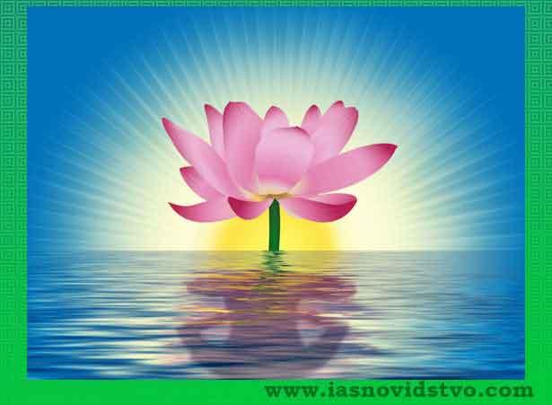 медитация за разширяване на съзнанието -лотос и логос